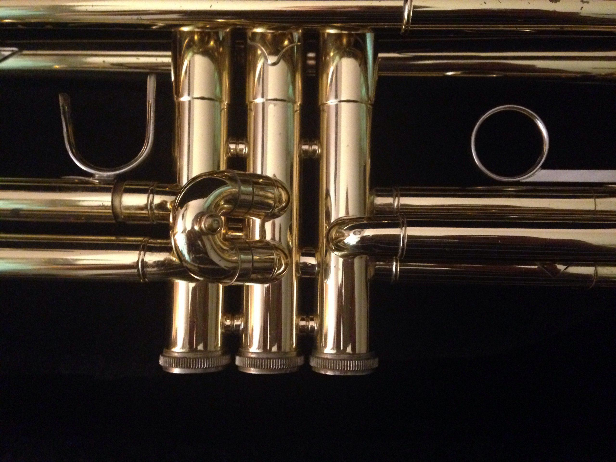 trumpet-3552691